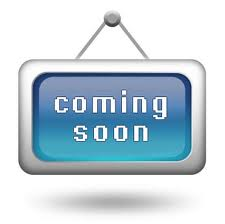 Видеоинтерфейсы скоро в продаже в интернет-магазине Car Solutions