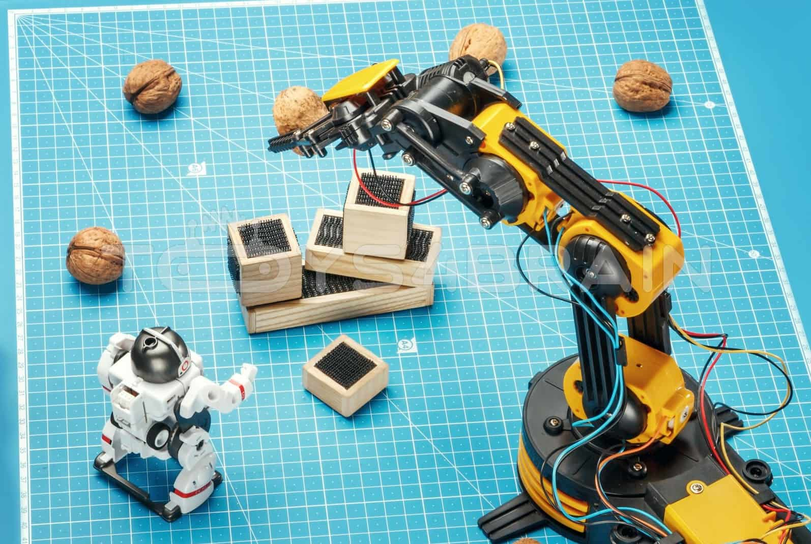 CIC 21-535N Wired Control Robot Arm - Toys4brain – STEM Toys